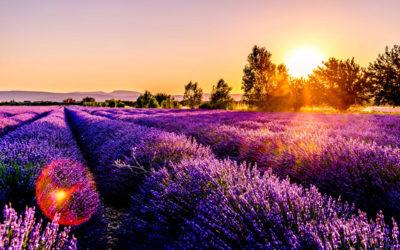 5 redenen om naar Frankrijk op vakantie te gaan